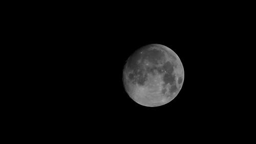 Una luna grigia..