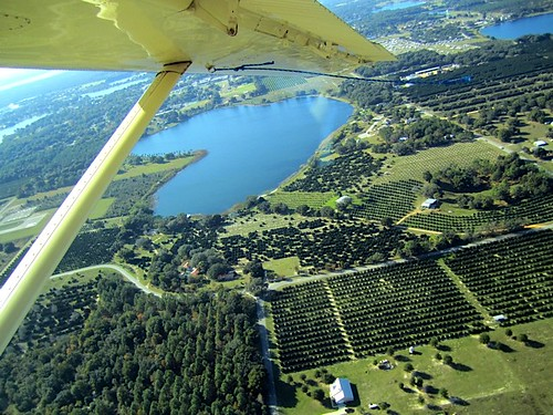 mt dora flight