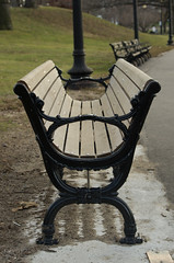 Jamaica Pond Bench