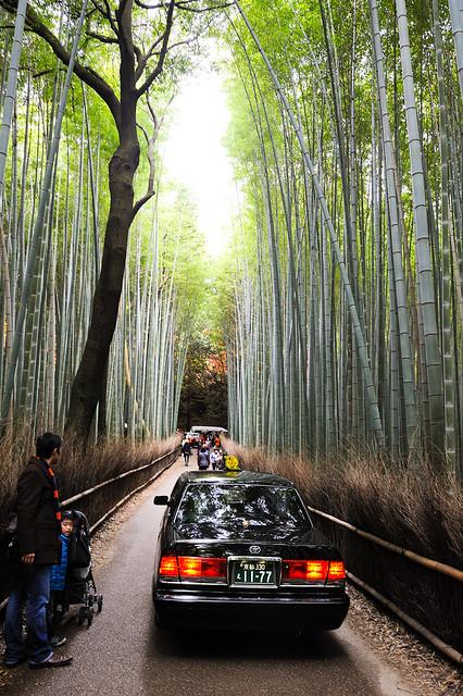 竹林裡的計程車