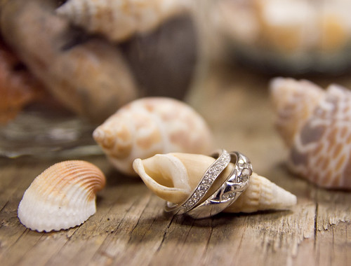 Rings and Shells