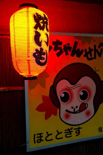 Japanese Lantern1