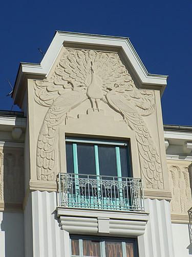 un paon à Nice.jpg