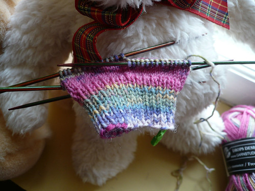 Starting Molly's socks