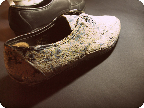 glittershoes2