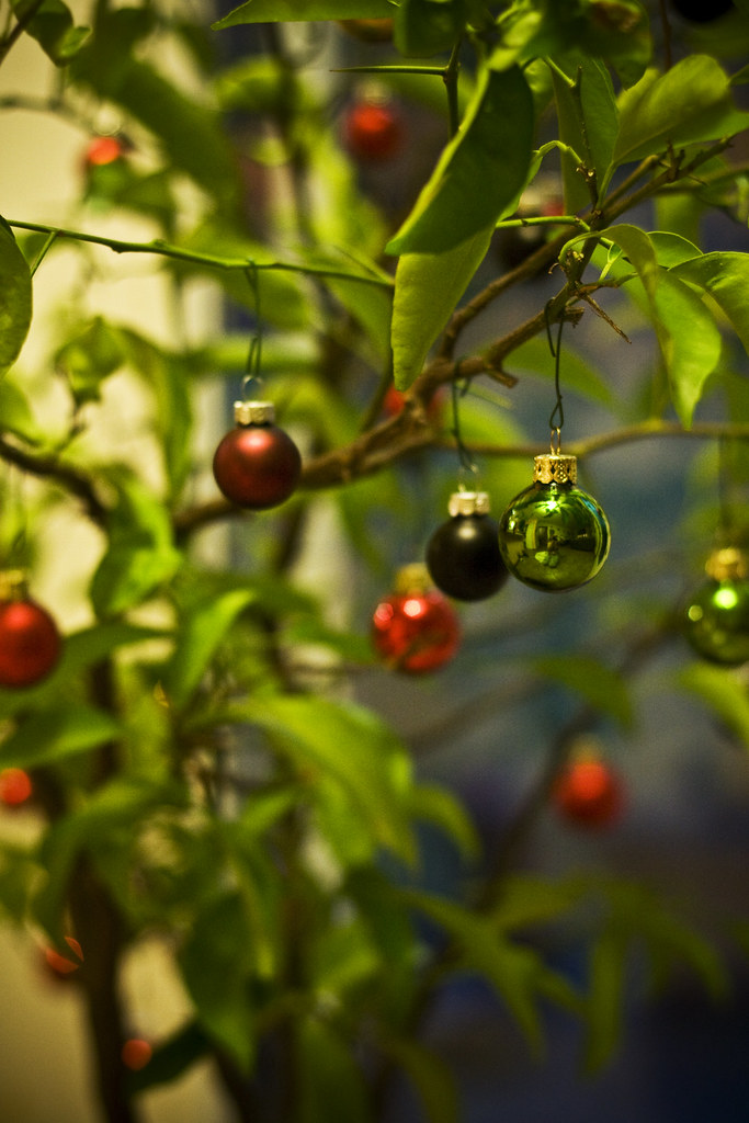 Tiny glass ornaments on the Christmas Clementine