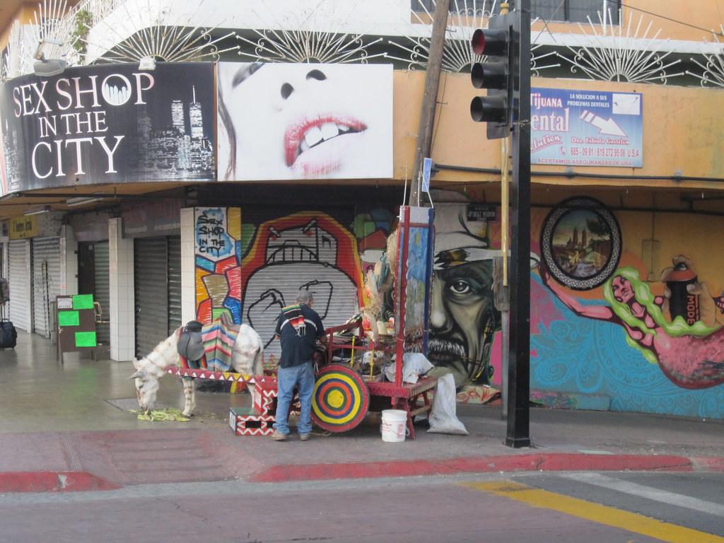 ... Sex Shop in the City store, and Donkey on Avenida Revolucion in Tijuana  Mexico |