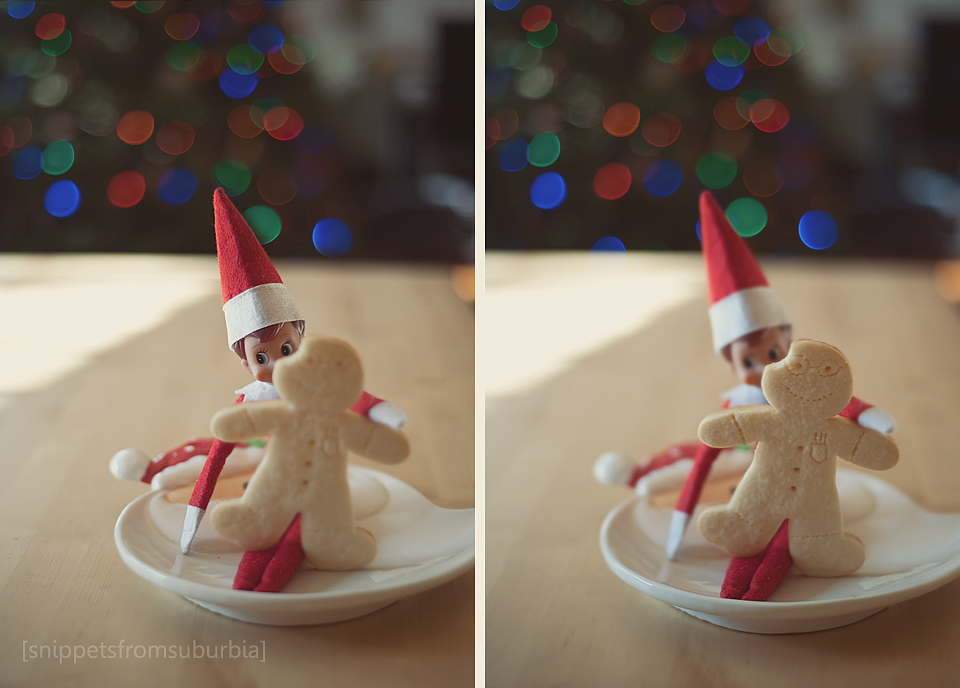 {357/365} Elf on the Shelf, Day 22