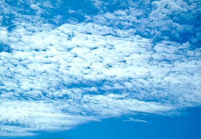IMG_1921 Cloud
