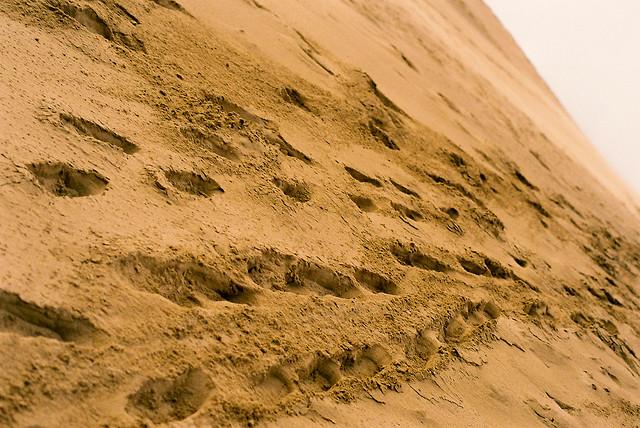 砂子很鬆軟,每踩一步向下滑也向上爬