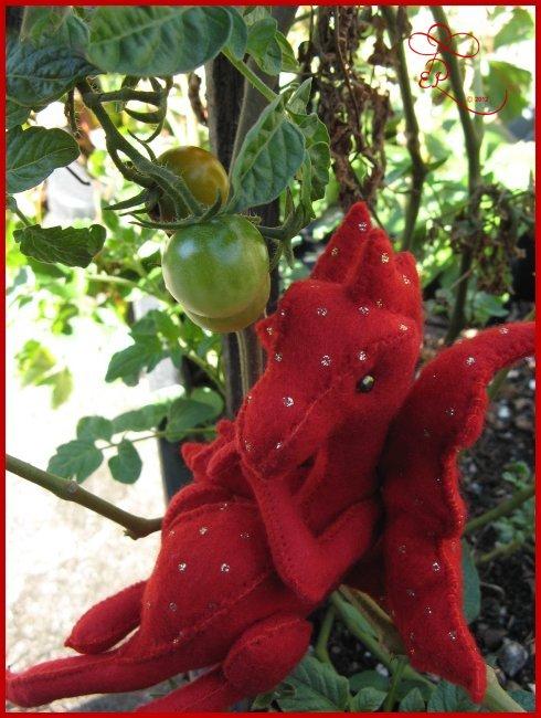 Week 2 - The tomato dragon