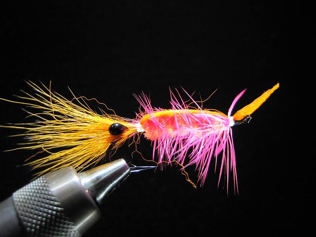 steelhead prawn