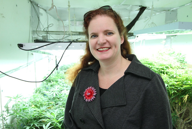 Medical Cannabis Growing Operation in Oakland, California