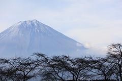 [フリー画像素材] 自然風景, 山, 富士山, 風景 - 日本 ID:201201221800