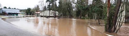 Flood-2481