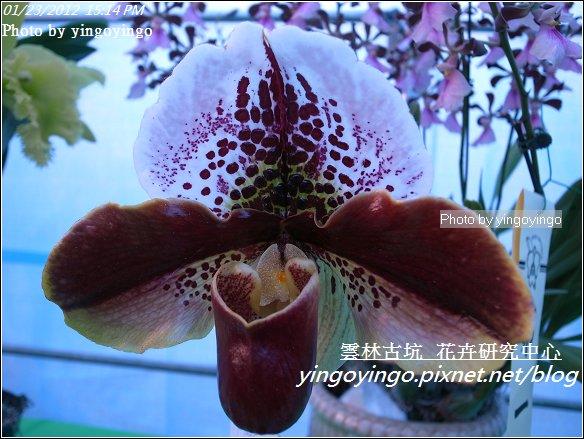 雲林古坑_花卉研究中心20120123_R0050685