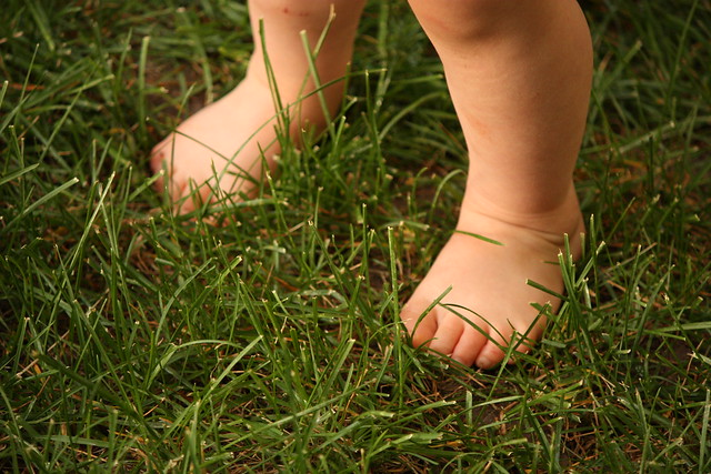 toes in grass