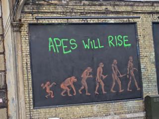 Apes, London, UK