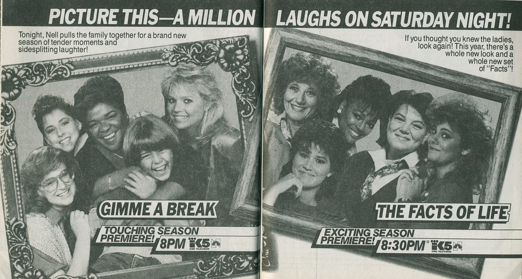 Gimme A Break & The Facts Of Life