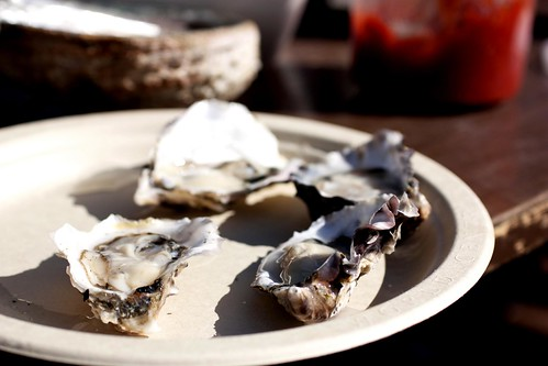 luna oysters from carlsbad aqua farms @ santa monica farmers market