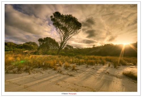 travel cloud sun green love beach nature beautiful beauty clouds forest sand nikon ray glare natural sigma australia fairy shore tasmania rays mm lovely tas sunrays 1020 hdr breathtaking sigma1020mm travelphotography d90 nikond90 ausse