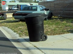 St. Petersburg - Rotonics Royal Series 95 Gallon Garbage Cart