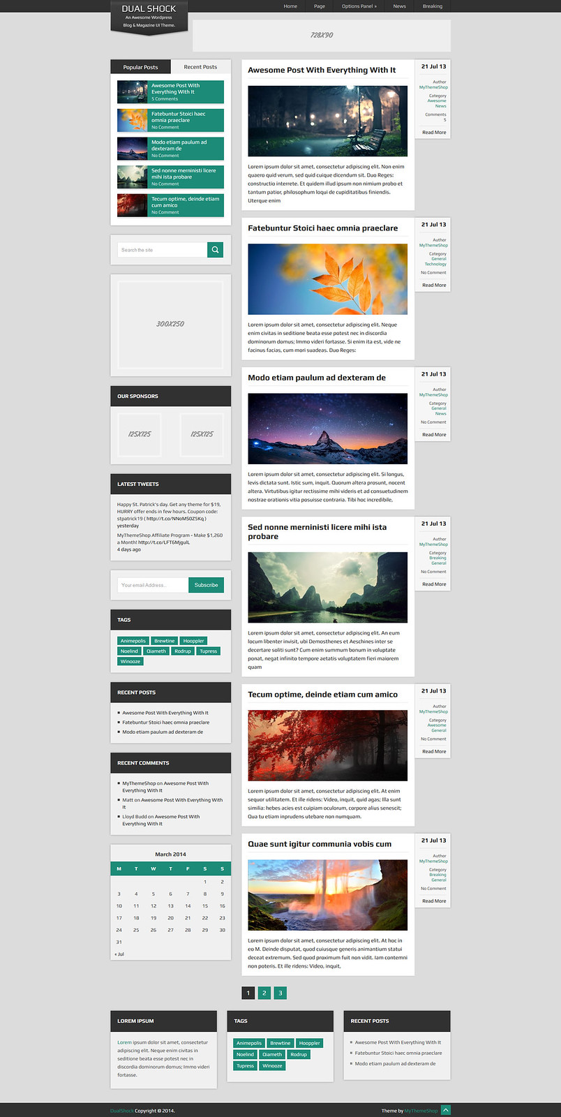 Dual Shock WordPress Theme