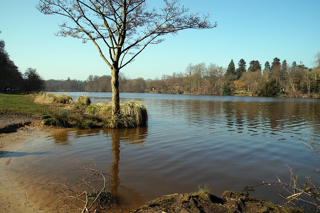 Virginia Water Lakes, Surrey