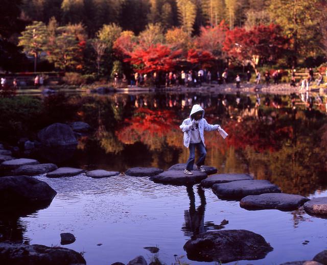 水面の秋景色