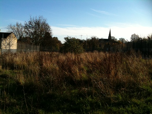 Looking across Deptford Meadow to St John's Church