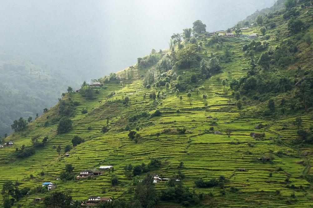 1003_Nepal_101