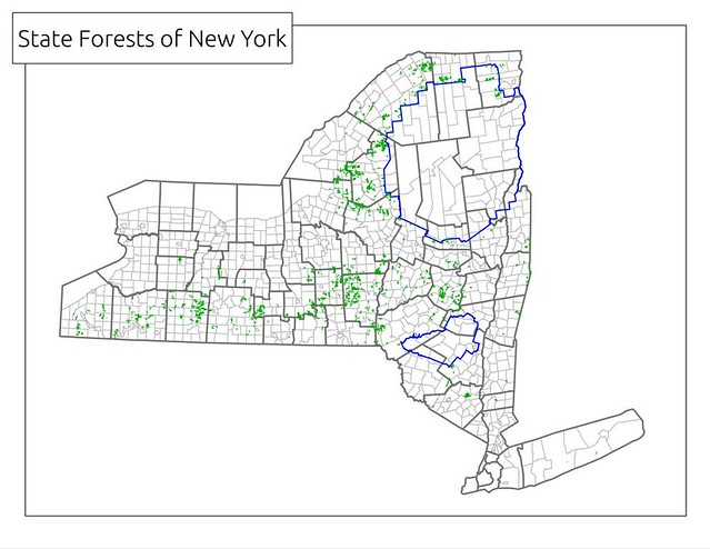 state forests of new york state