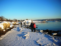 Winter at Beach Huk in Oslo #2