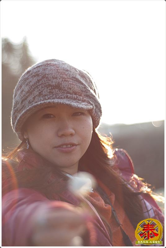 2011.12.03 銅鑼杭菊-11