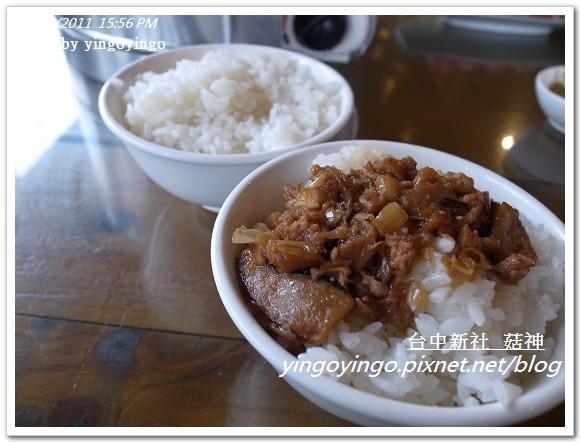 台中新社_菇神20111126_R0044217