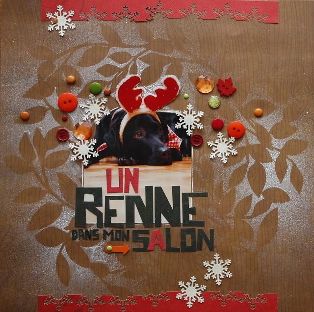 23 décembre - Un renne dans mon salon + Très bientôt 6473428989_c9bbeb9033_z