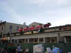 Pig Reindeer @ Pike Place