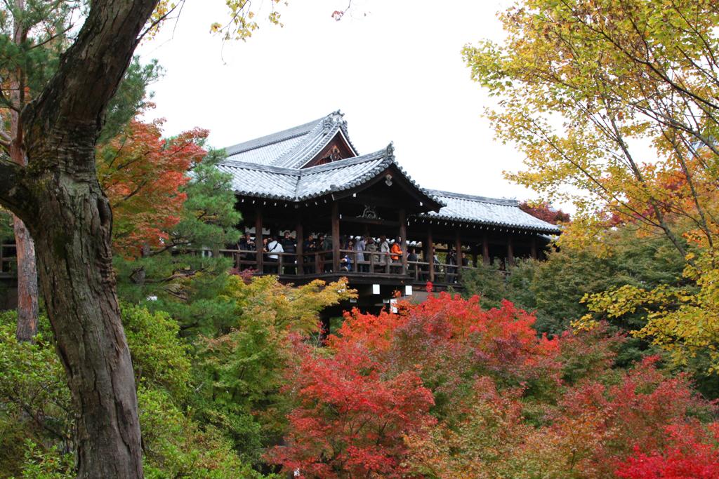 Kyoto Rakunan Guide (10)