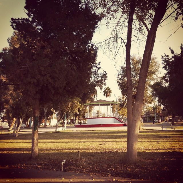Parque Ciudad Morelos (Cuervos)