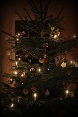 Árbol de Navidad - Weihnachtsbaum