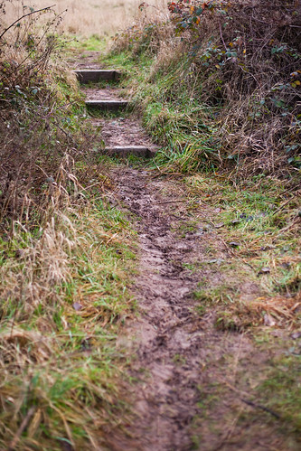991/1000 - Muddy Path by Mark Carline