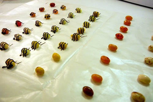 candy bees