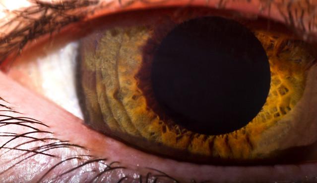 2012_01_DustanS_Eyes_2104