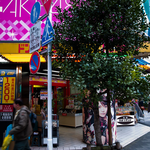 Limited Green in Akihabara with AKB 48 and Tree