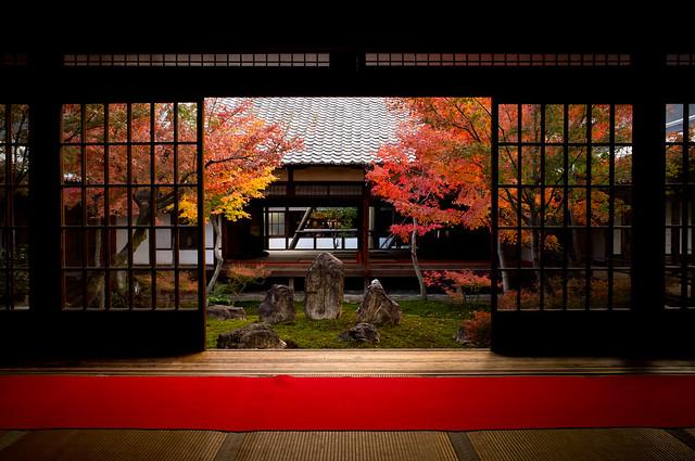 Momiji '11 - autumn leaves #19 (Kennin-ji temple, Kyoto)