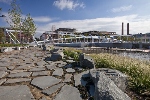 green infrastructure at The Yards Park (by: Forest City Washington, via DCYards.com)