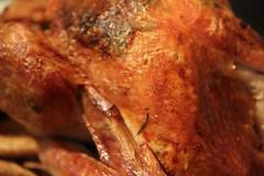 turkey(0.0), fried food(0.0), chicken(0.0), fish(0.0), phasianidae(0.0), bird(0.0), turkey meat(1.0), roasting(1.0), hendl(1.0), tandoori chicken(1.0), food(1.0), dish(1.0), roast goose(1.0),