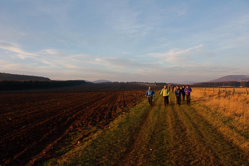 Walking past fields