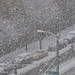 snowday-1030299 by Belltown