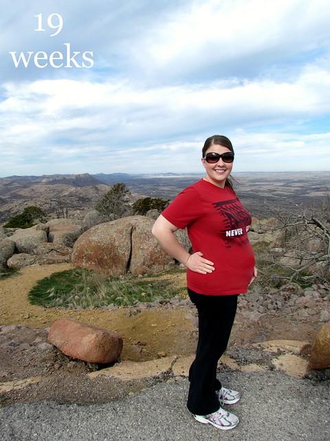 Bumpdate: 19 weeks